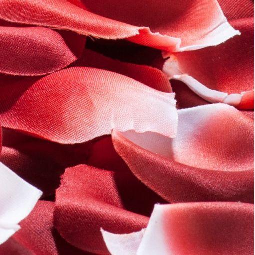 Bijoux Indiscrets Rose Petal Explosion płatki róż czerwone